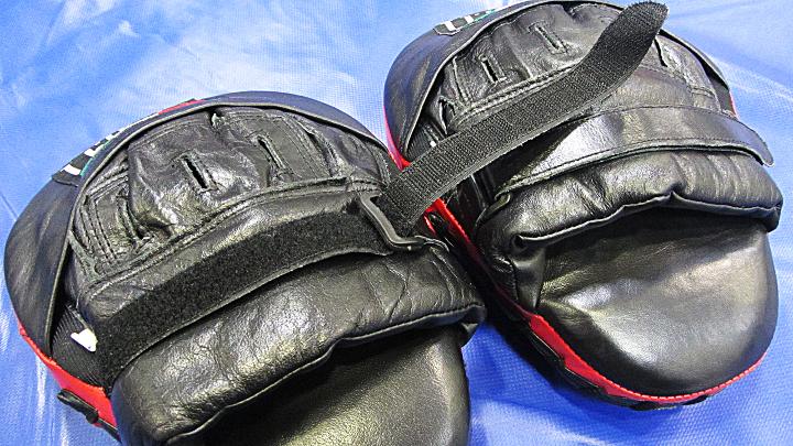 Боксерские-лапы-леон