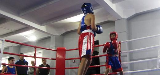 Соревнования-по-боксу-в-Казани