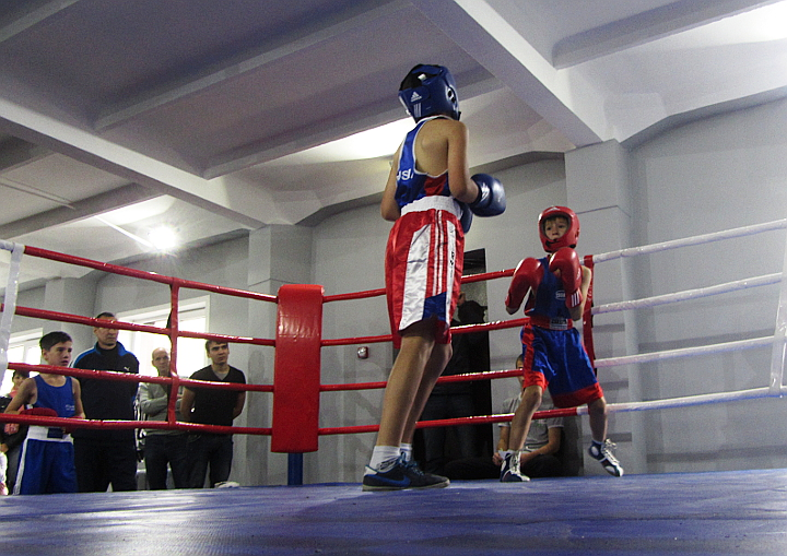 Турнир-по-боксу-в-Казани