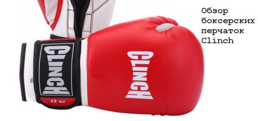 Боксерские-перчатки-Clinch