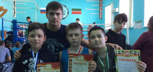 Открытый-ринг-Кукмор-Республика-Татарстан