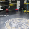 Обзор бойцовского клуба Golden Tiger